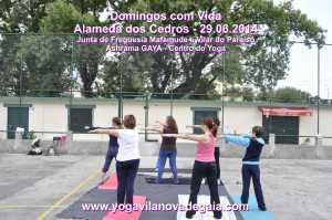 Domingos com Vida - 29.06.2014 - Alamenda Cedros - Yoga 3