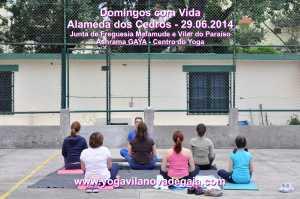 Domingos com Vida - 29.06.2014 - Alamenda Cedros - Yoga 4