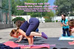 Domingos com Vida - 29.06.2014 - Alamenda Cedros - Yoga 5