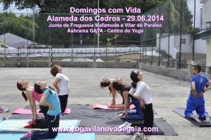 Domingos com Vida - 29.06.2014 - Alamenda Cedros - Yoga 7
